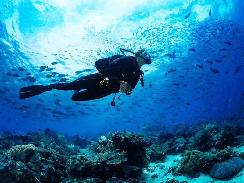 ダイビング用フードベストの選び方