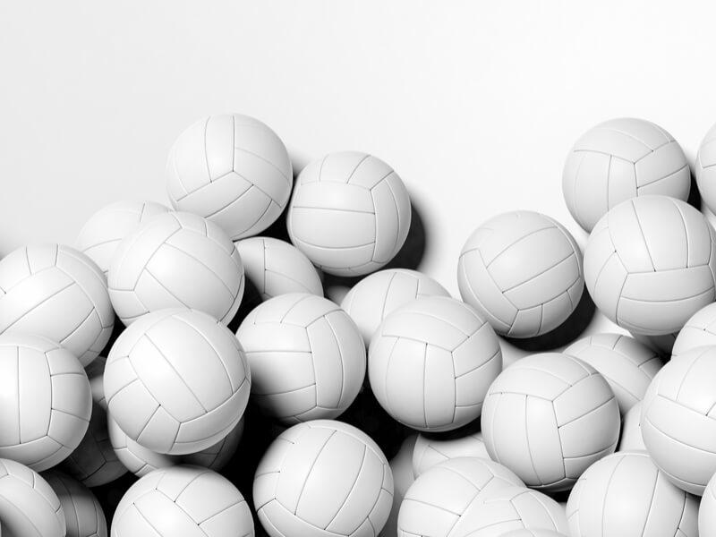 バレーボールの人気ボールメーカー