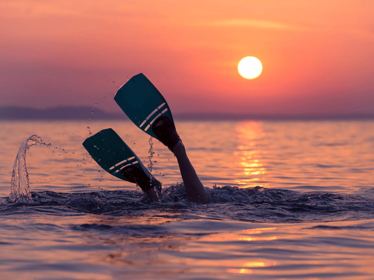 フィンのサイズ・長さで選ぶ,シュノーケル フィン