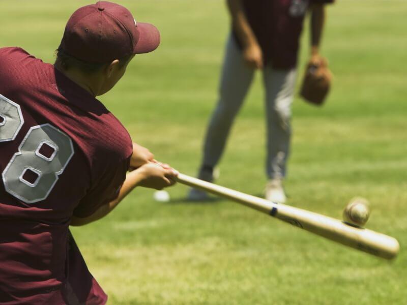 目的に合わせた硬式用野球バットの選び方