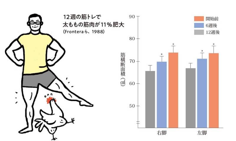 70代男性の11%も筋肉が太くなったというデータ