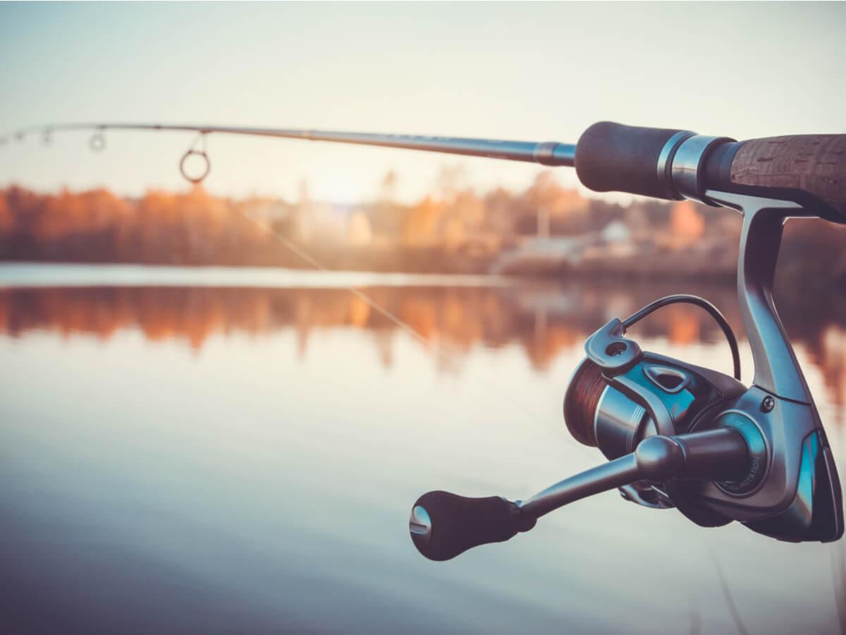 ダイワの磯竿おすすめ5選!人気モデルを使って釣りライフを楽しもう